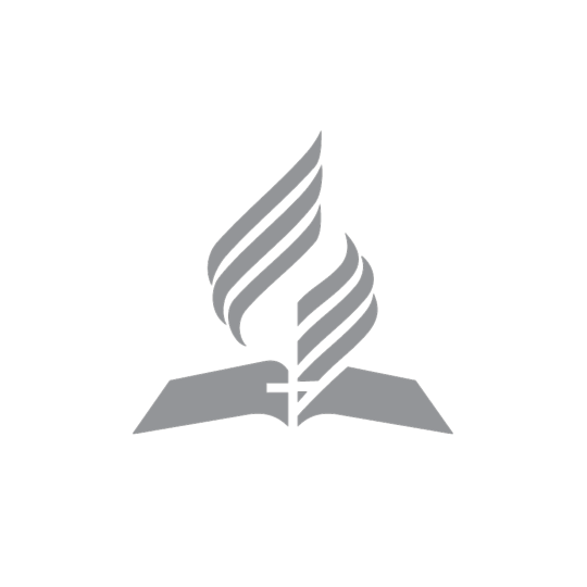 STA-Logo Autoaufkleber, gross