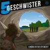 Fünf Geschwister - Zurück in die Steinzeit, Folge 25