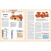 Heilkräfte der Nahrung, Band 2